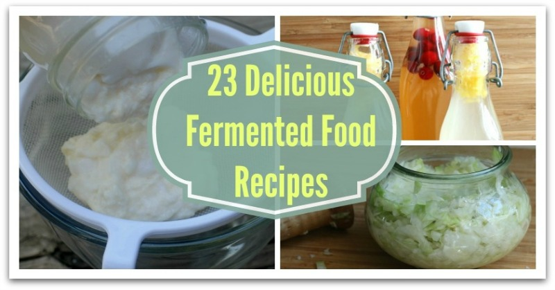 23 Delicious Fermented Food Recipes