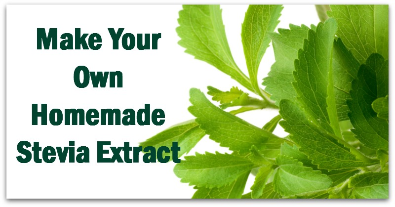 Make Your Own Homemade Stevia Extract