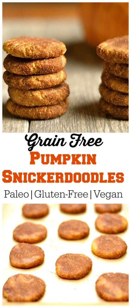 Grain-Free-Pumpkin-Snickerdoodles-Pin