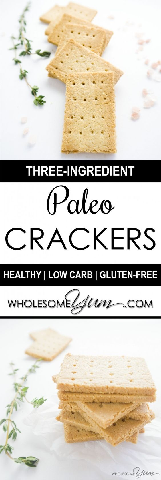 3-ingredient paleo crackers - vegan, gluten free