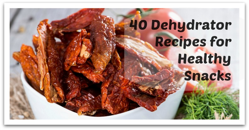 40 Dehydrator Recipes For Healthy Snacks Natural